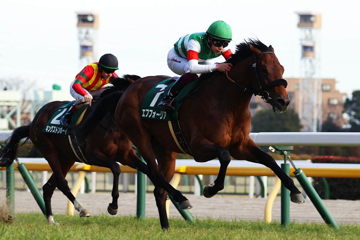每日賽馬晚報(2021年2月16日),日本三歲馬大賽直行便增發中,貝善利重新策騎救新加坡馬市