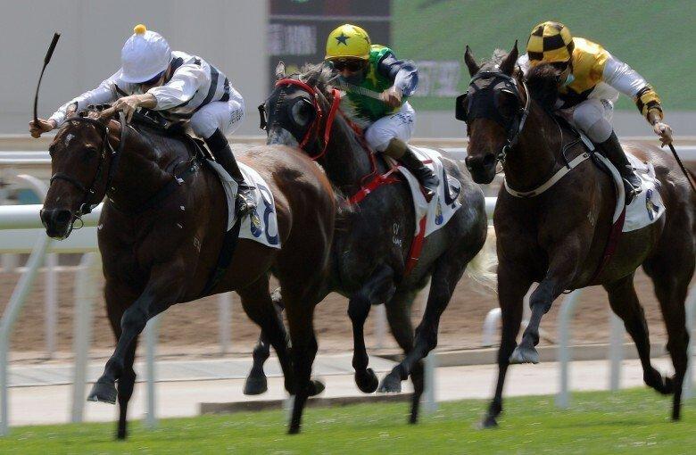 香港四歲馬系列賽新風雲,神駒系南美勢力勇戰神駒