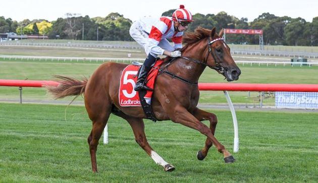 川河系大軍澳洲大舉進攻兩歲馬系列賽