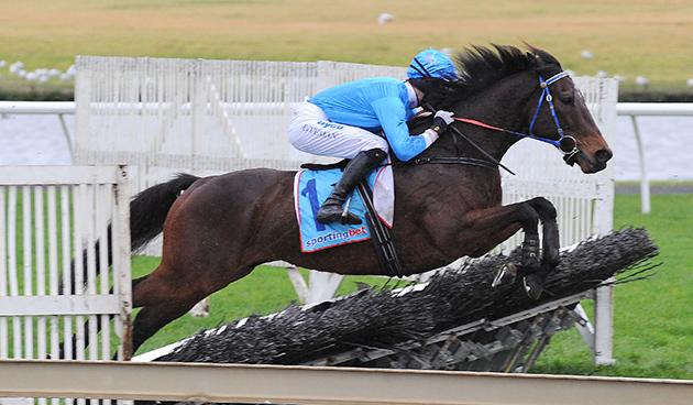 每日賽馬晚報(2021年3月16日),72匹澳洲馬部份賽事取消資格,戴寶力離開希斯家族獨自搵食