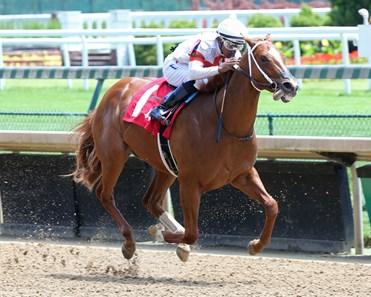閃耀杜拜世界盃賽馬日最終章,三歲馬的強頑突破點(阿喬斯短途錦標特別前瞻)