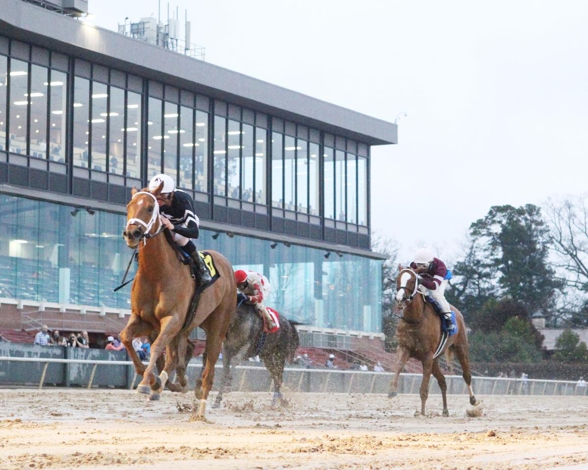 每日賽馬晚報(2021年3月1日),有人大膽在沙田馬場內賭外圍馬,明星一哩賽公佈最後四張外卡