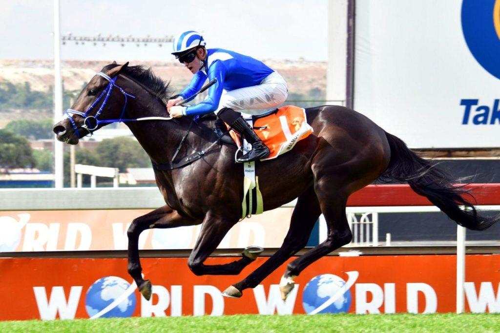 每日賽馬晚報(2021年3月8日),龍子爵或退出明星一哩賽,Malmoos南非三冠聽牌