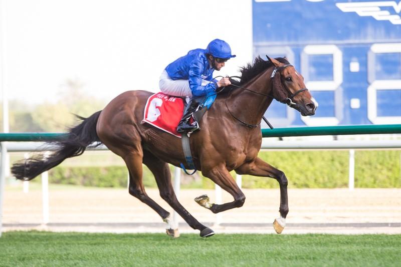 杜拜超級星期六第一部份,禾噸街贏同主馬成條街,拉票衝刺當選北風錦標