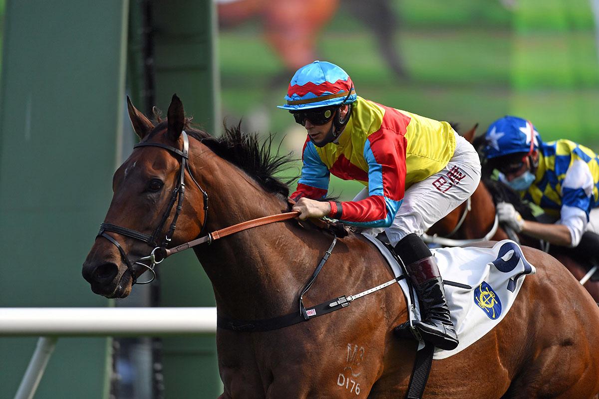 香港冠軍賽馬日,高伯新短途另一張王牌福逸