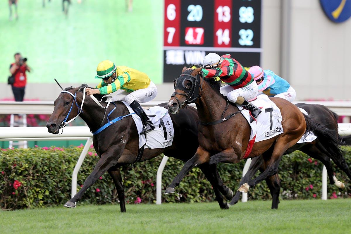 香港打吡大賽,達心星提早跟前突圍而出