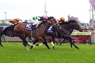高松宮紀念賽,野田重擊無懼雨勢贏馬