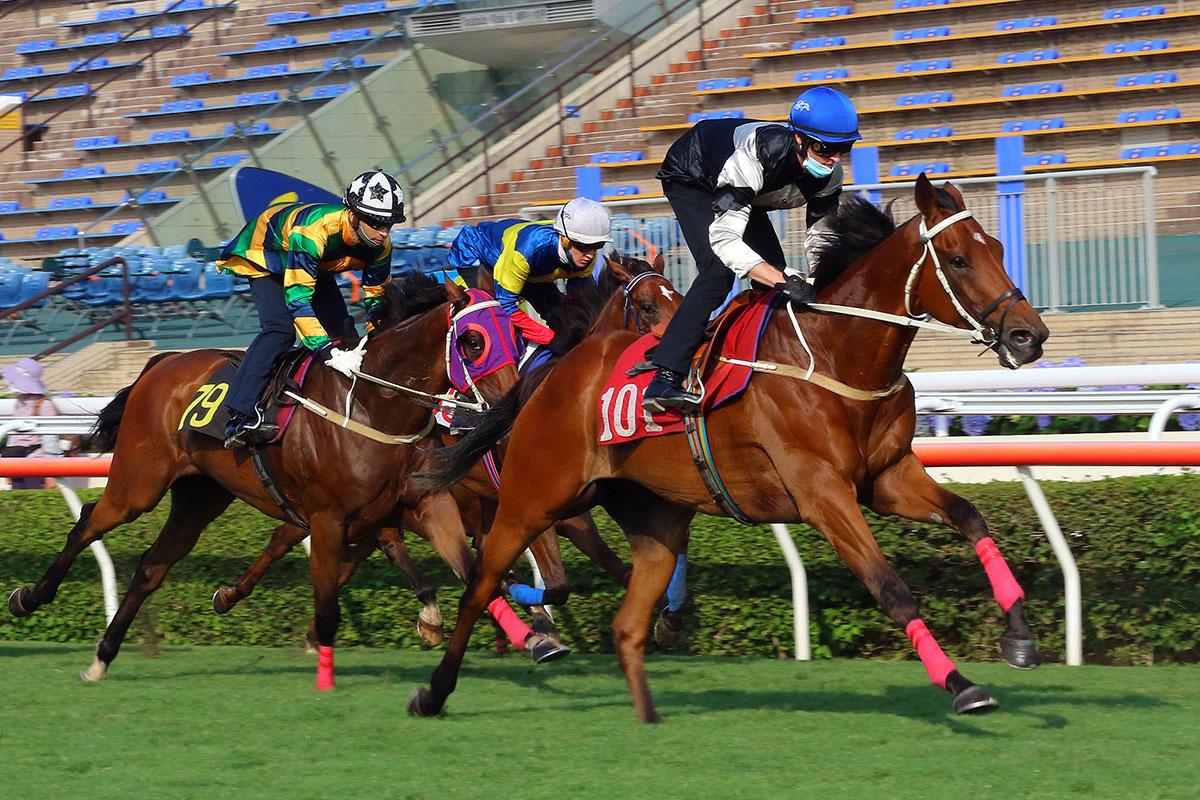 每日賽馬晚報(2021年4月13日),Satono Reinas隱晦指角逐東京賽事,告東尼埋怨其他馬匹避戰女皇盃