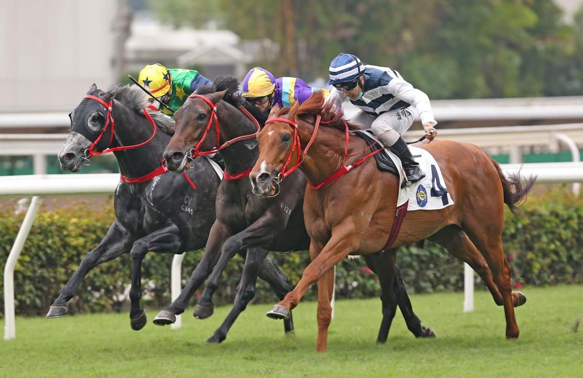 賽馬專題,增加獎金名次範圍,確保出賽馬匹數目