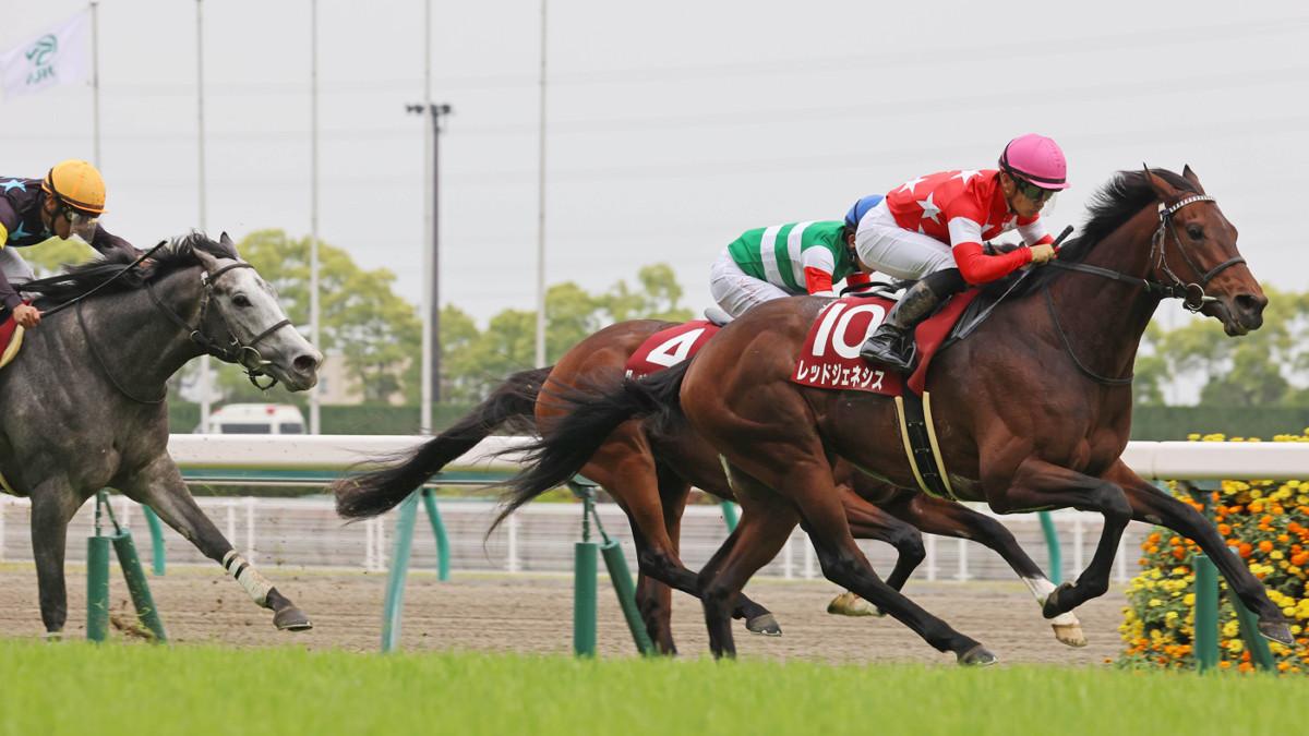 每日賽馬晚報(2021年5月11日),友道康夫京都新聞盃連贏馬一上陣一缺席
