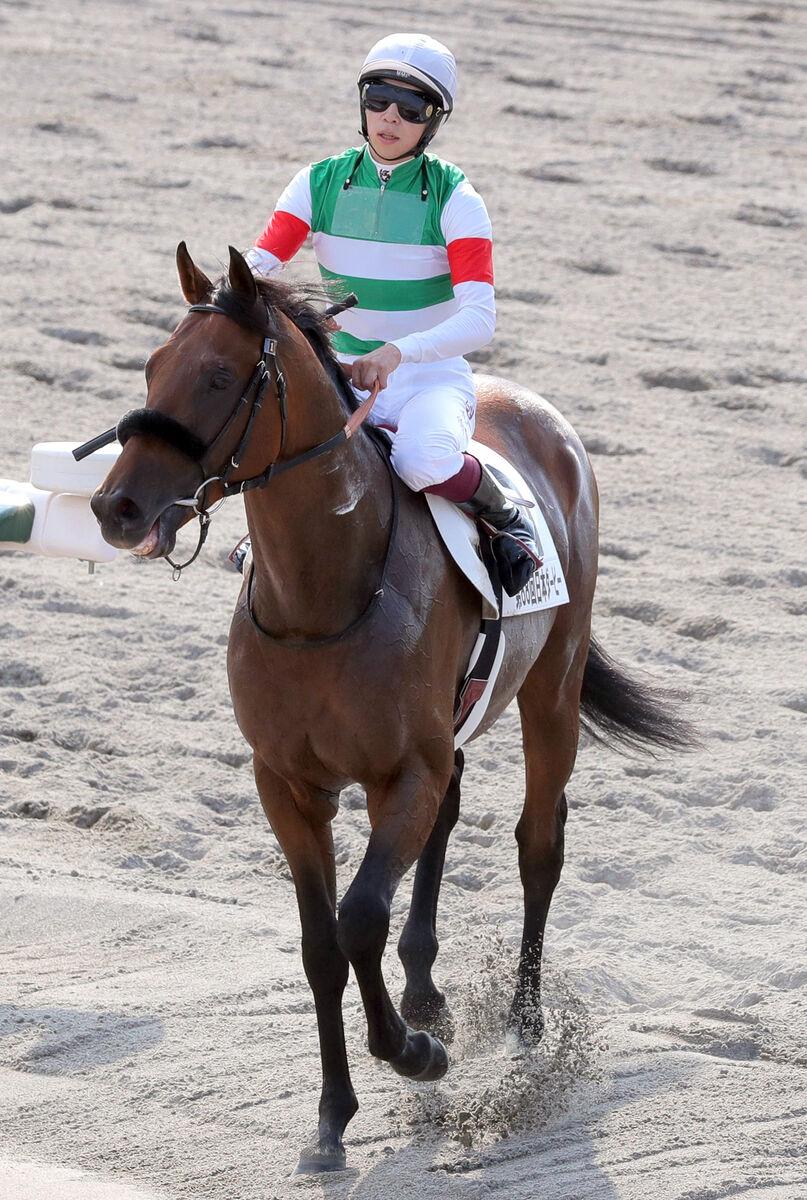 每日賽馬晚報(2021年6月1日),英法打吡報名馬最新情況,John Messara成澳洲賽馬和事佬?