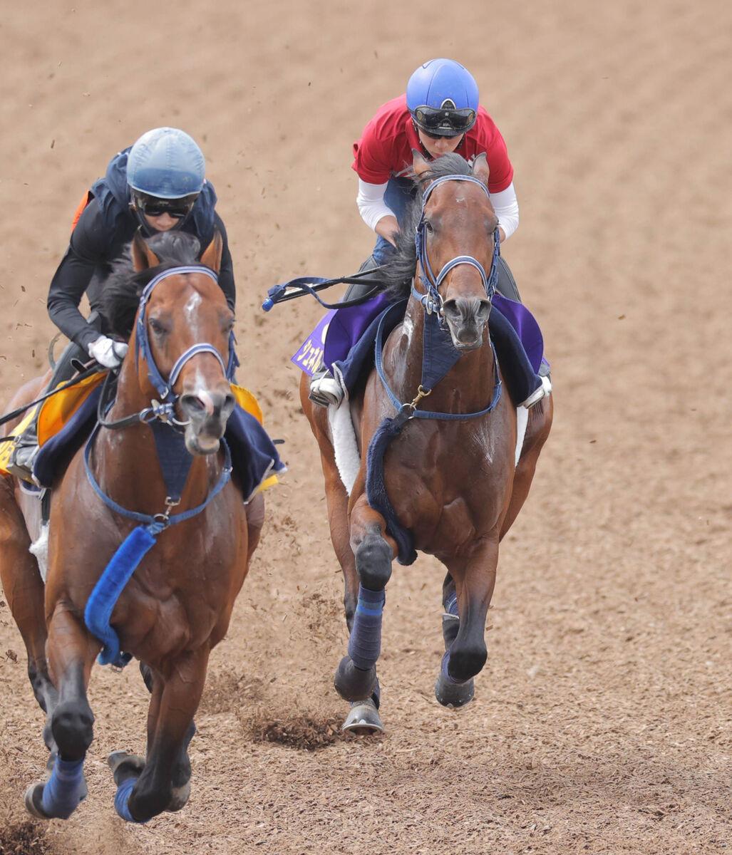 每日賽馬晚報(2021年6月2日),Tsaritsa成首匹確定交通意外離世馬匹,速度大師週由橫山武史策騎