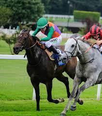 2021年8月20日楠索普錦標賽馬日連戰結束最終之選