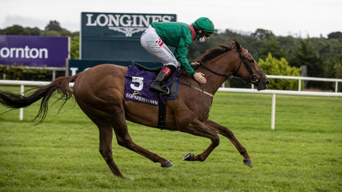大利威確定跑愛爾蘭冠軍錦標