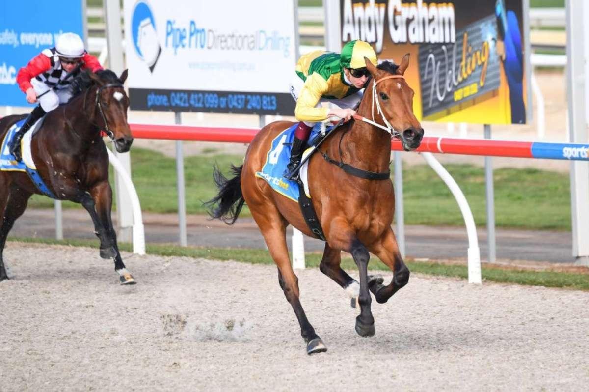 每日賽馬晚報(2021年8月10日),再多五駒以歐洲路征參加墨爾本春季嘉年華,前香港馬星耀之光處女馬賽大勝五個馬位