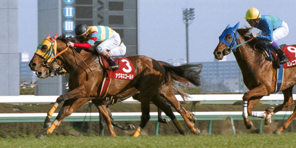 流向巴西,成為冠軍級種馬Agnes Gold離世